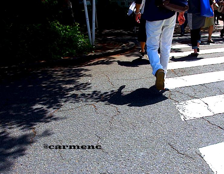 影と人と横断歩道