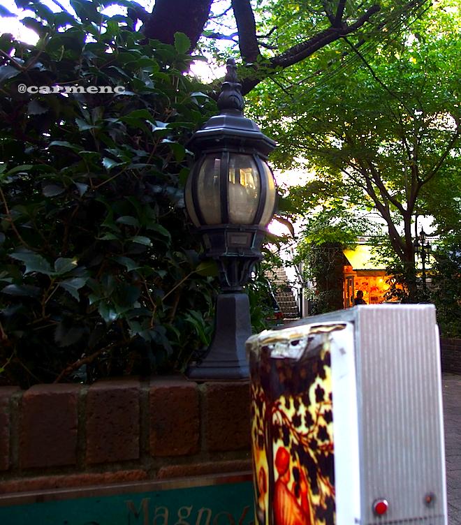街灯と看板