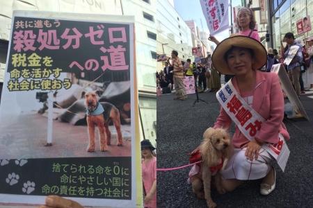 福島みずほ参議院選挙2016