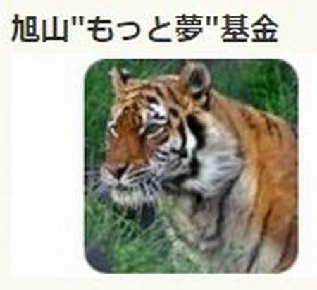 20161019115638ec1_20161019185435065.jpg