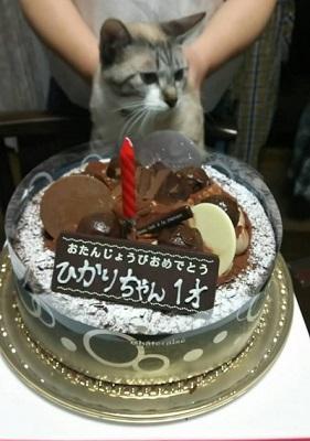 誕生日 image1
