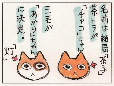 がんこちゃん 1-2