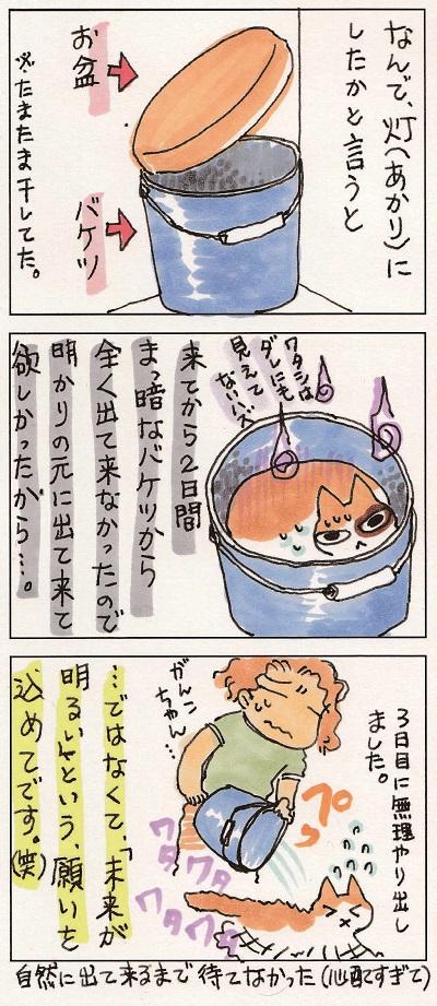 がんこちゃん 2-2