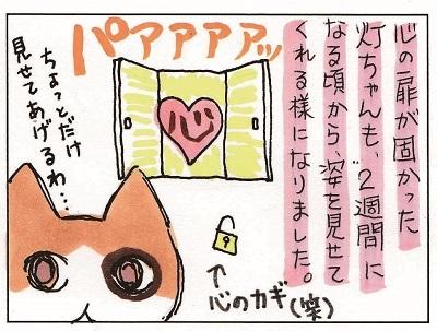 続 あかりちゃん 1-2