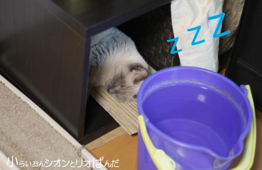 omoshiro249.jpg
