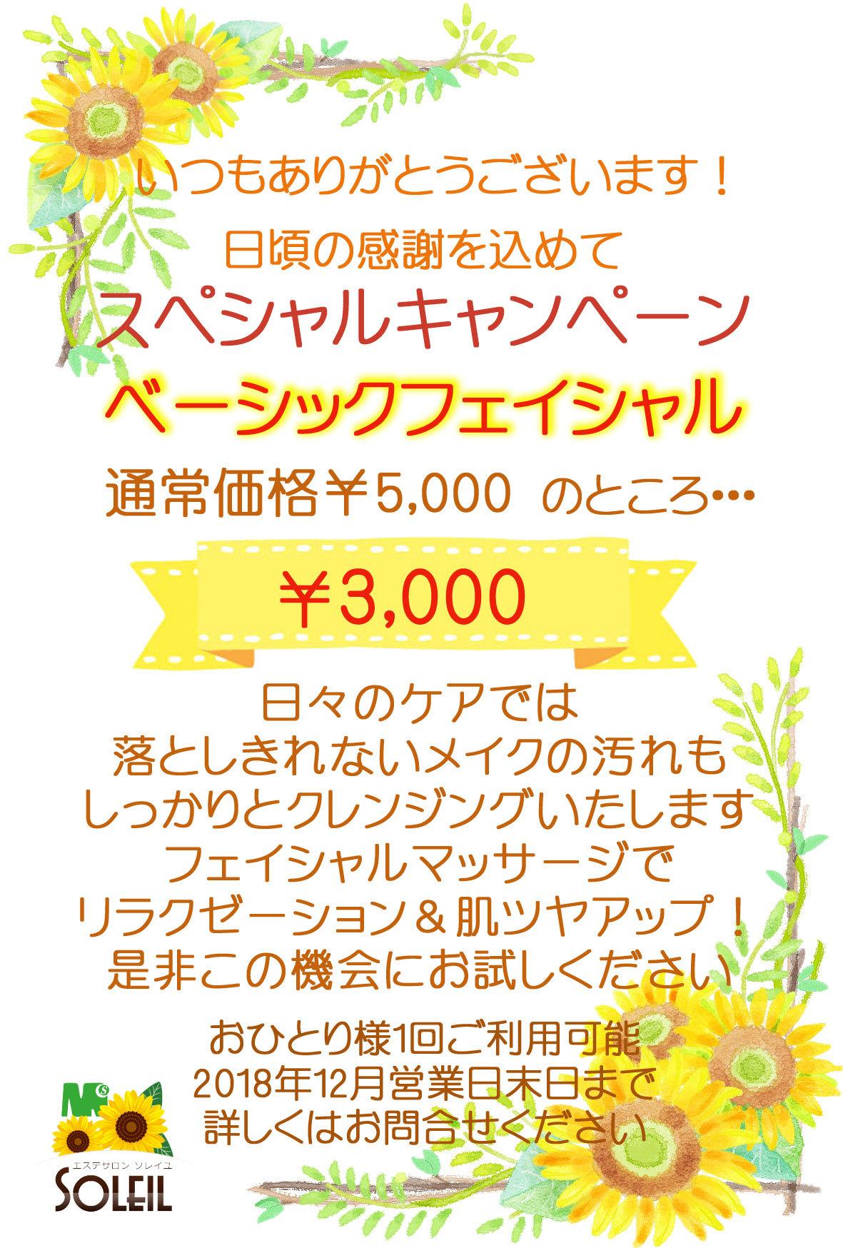 ベーシック3000
