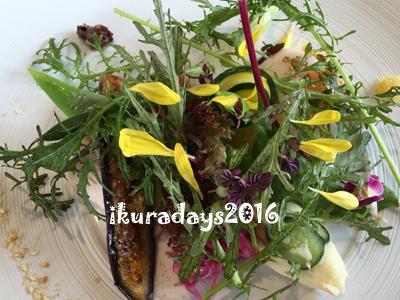 20160819_salad3.jpg