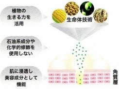 コラーゲン生産して美白力があり100%植物美容成分!医学誌にも掲載された、修復する美容液【リペアジェル】