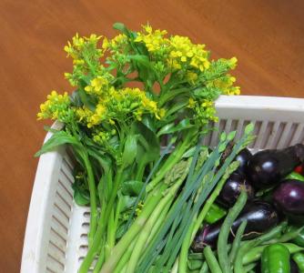 オータムポエム収穫物