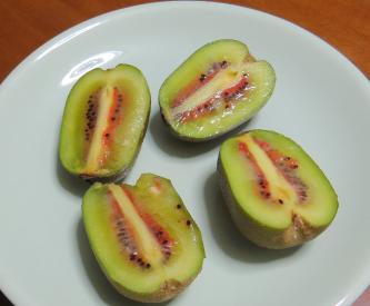 熟したキウイ、品種はレインボーレッド