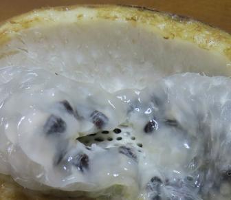 アケビのジューシイな果実