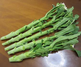 カイラン収穫物(葉は切除)