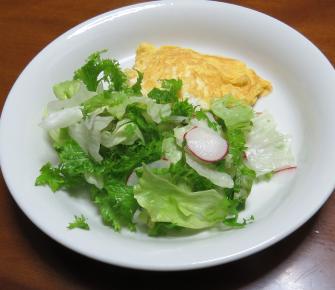 わさび菜入り生野菜レタス