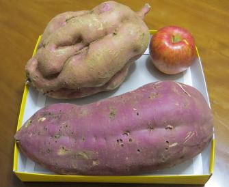 巨大サツマイモ