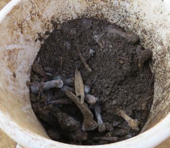 魚や骨の生ゴミ処理3か月後白カビ