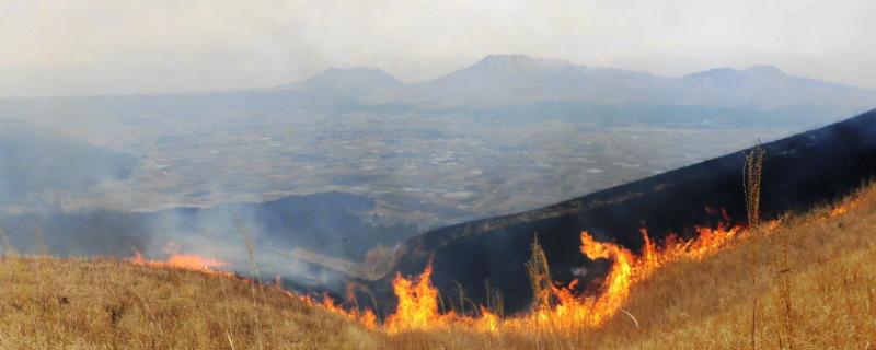 阿蘇の野焼き風景