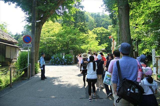0622_鎌倉006