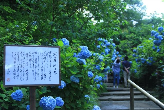 0623_鎌倉001