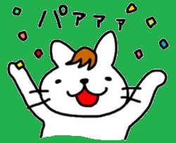伊藤ネコ19