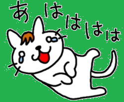 伊藤ネコ016