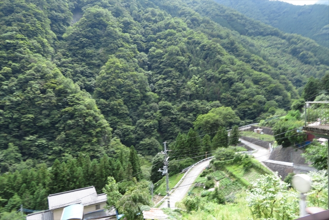 20160821_OKUTAMA049.jpg