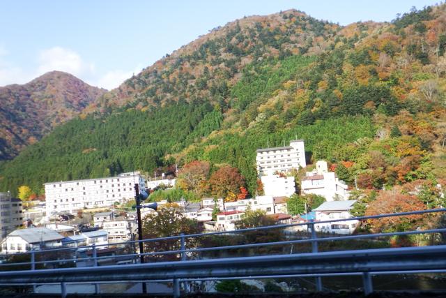 紅葉Day2 (14)