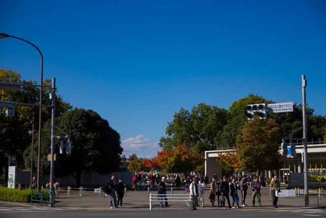 昭和記念公園 (12)
