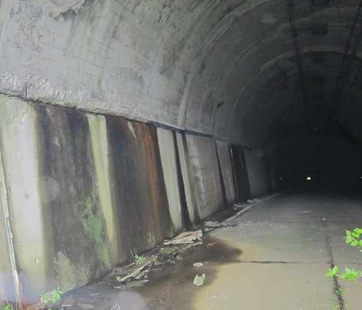 kyusakuramatitunnel08.jpg