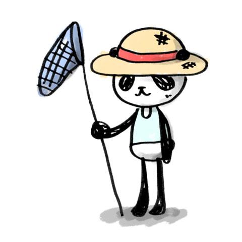 panda-073.jpg