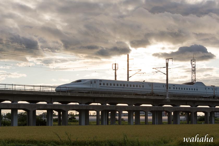 300910kanagasaki-1.jpg
