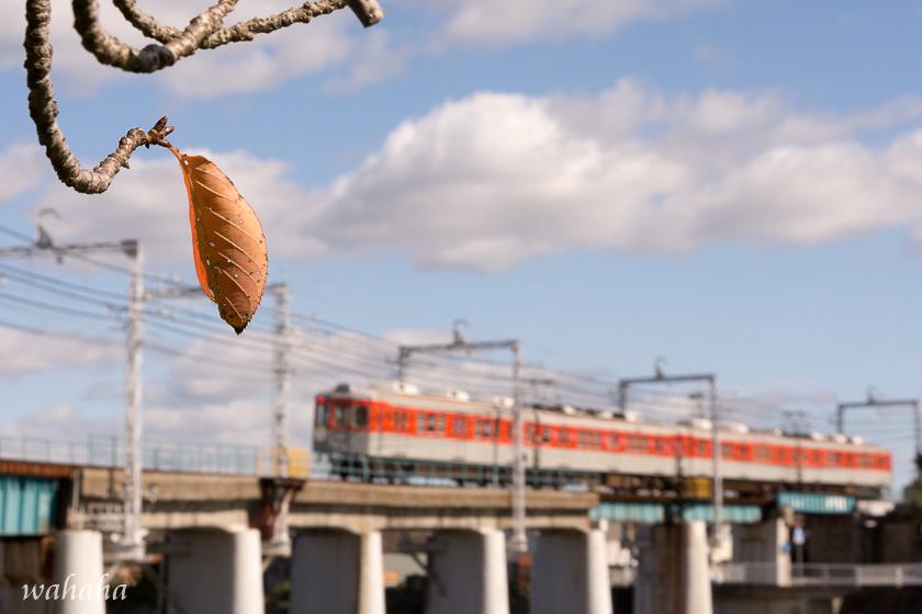 301020sintetsu_minogawa-1.jpg