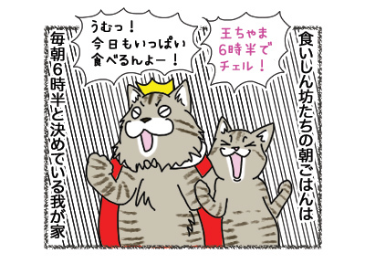 01102018_cat1.jpg