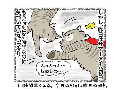 01102018_cat2.jpg