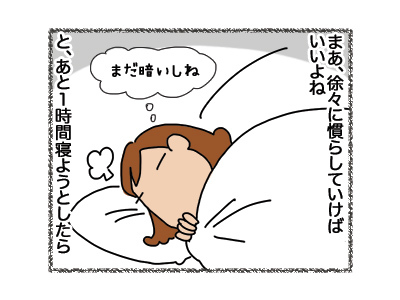 01102018_cat3.jpg