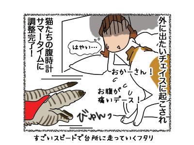 01102018_cat4.jpg