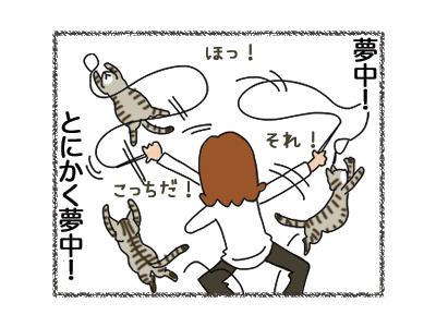 01112018_cat2.jpg