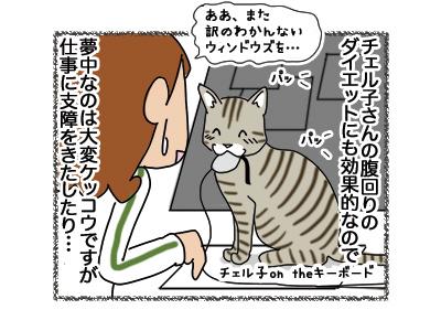 01112018_cat3.jpg