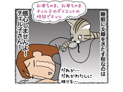 01112018_cat4.jpg