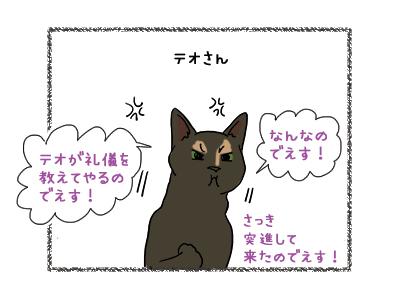 02012019_cat2.jpg