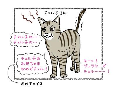 02012019_cat3.jpg