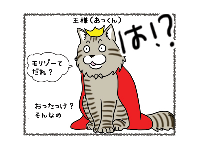 02012019_cat4.jpg