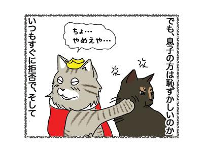 02102018_cat2.jpg
