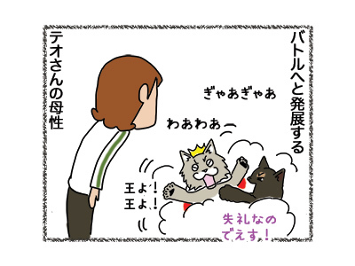 02102018_cat3.jpg