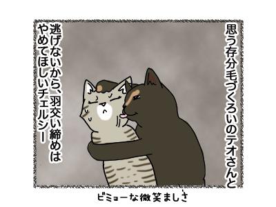 02102018_cat5.jpg