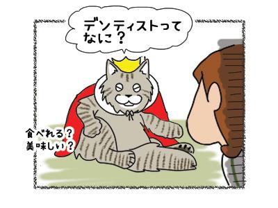 02112018_cat4.jpg