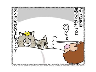 03102018_cat2.jpg