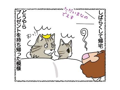 03102018_cat3.jpg
