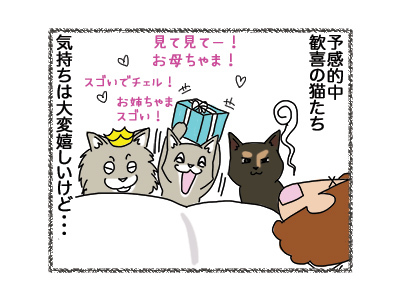 03102018_cat5.jpg