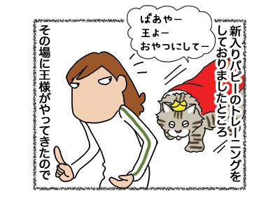 04012019_cat1.jpg