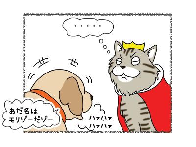 04012019_cat3.jpg